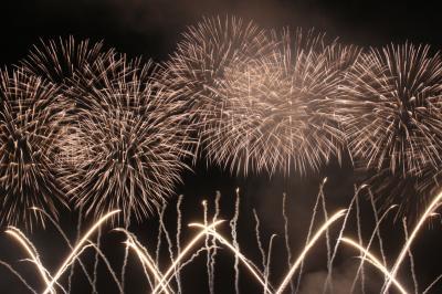 長岡花火大会、心が震える感動の花火というは本当でした。