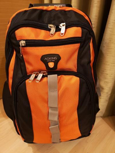 今回はバックパッカーもどき、キャスター付きリュック1つでインド旅
