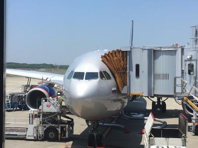 ロシア ②☆交通手段 PART1 飛行機☆