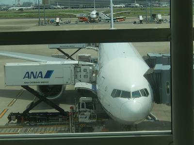 東京羽田空港よりフランクフルト迄の弾丸旅行①羽田空港国際線ターミナルにて