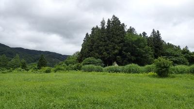 ジェットでびゅ~ん!!&列車&レンタカー/初遠野に大感動&花巻と鉛温泉4泊5日