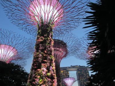 初☆東南アジア シンガポール旅 2  2.3日目 初めて海外で病院へ。