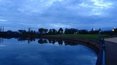早朝散歩 雨も止んだので、久しぶりの早朝散歩に、新池公園へ出かけました 下巻。