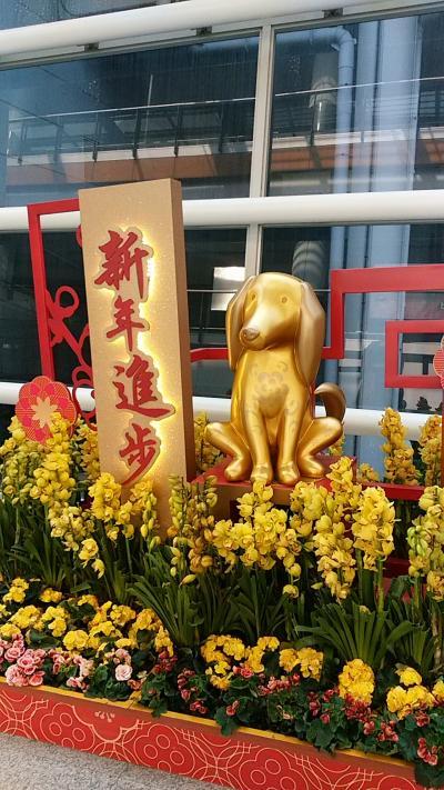 母と行く、旧正月前の香港旅