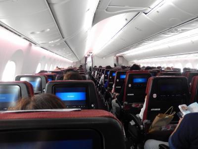 JAL 成田→モスクワ B787 エコノミークラス 搭乗記