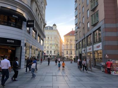 ウィーンの歴史と文化と芸術を楽しむ!(到着日~1日目)