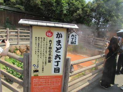 九州・夏(5)別府地獄めぐり(その2)かまど地獄、鬼山地獄、白池地獄