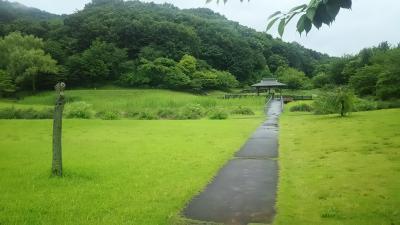 県内最大の公園、、、どう見ても山だろう。