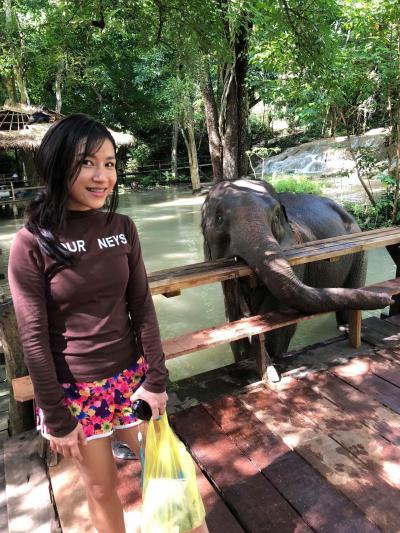 ネックさん  6 セー滝で象さんと遭遇す