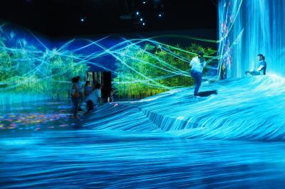 お台場 チームラボデジタルアートミュージアム【MORI Building Digital Art Museum: EPSON teamLab Borderless】