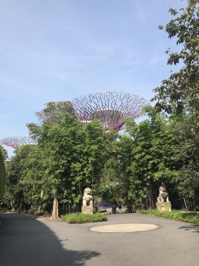 JGCシンガポール一人旅1泊2日の旅