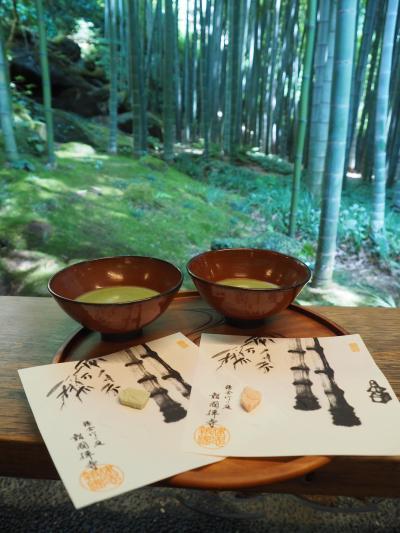 報国寺 竹寺。毎年こちらの竹林を観ながらお抹茶を頂くのが楽しみ! 夏の季節がやって来た!