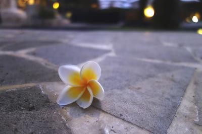 初海外!エアアジアで行くバリ島男一人旅(3日目)