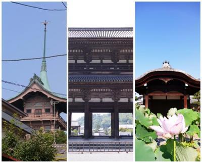 京都寺社巡りは猛暑にも負けずに、法金剛院、仁和寺そして大雲院を訪ねる
