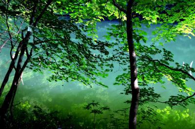 ◆福島・四季・彩々・Part,77・空梅雨の候