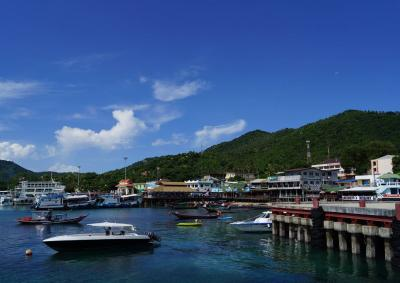 2018タオ島 100本記念はジンベイと 04タオ島を遊ぼう