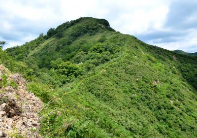 鎌ヶ峰(1669m) 長良川の源流域