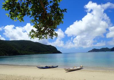 夏は 奄美の海と山で遊ぼう♪ 漕いで 泳いで 飲んで また漕いで… ◇「あやしい(中年)探検隊」season5