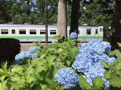 にわか乗り鉄が行く  札沼線  往復の旅