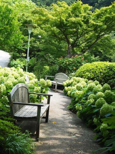 浄明寺 境内から続いて石窯ガーデンテラスが人気! でしたが、お休みでがっかり!