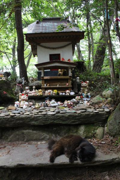 青春18きっぷで行く田代島のにゃんこと景色に癒される旅【後編】