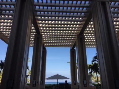 パワーアイランド☆ハワイ島でイルカと夕陽と星と@ヒルトン・ワイコロア・ビレッジ vol.1 Jul. 2018