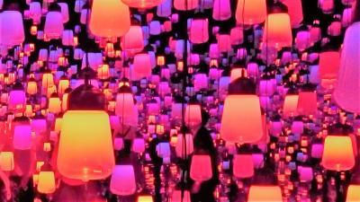 チームラボ 音と光のデジタルアートに浸ってみました(2)「ランプの森」が幻想的なボーダレス