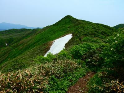 猫探し【神室山(Mt. Kamuro)編】