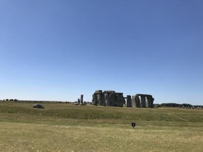 広ーい野原に円形に石が置かれています。