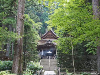 2018夏の花旅:(1)駒ヶ根高原