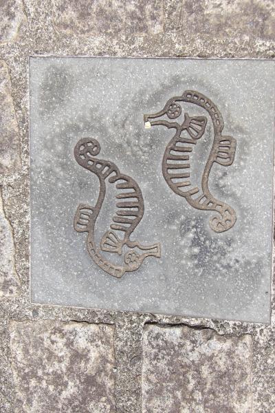 真鶴町内の階段の石タイル