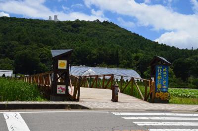 富士山を一周 2018.07.10 =3.山中湖・花の都公園=