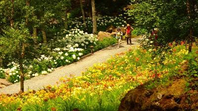 桃の買い出し(19) 富士見高原花の里でカートに乗って見学後昼食 その2。