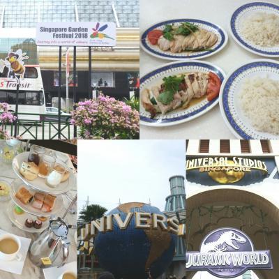 ラウンジを楽しむシンガポール2泊4日