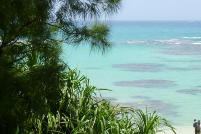 海と森の島・奄美大島2泊3日ツアー