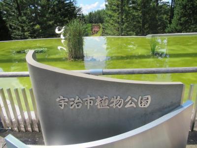 宇治市植物公園と、宇治散策。