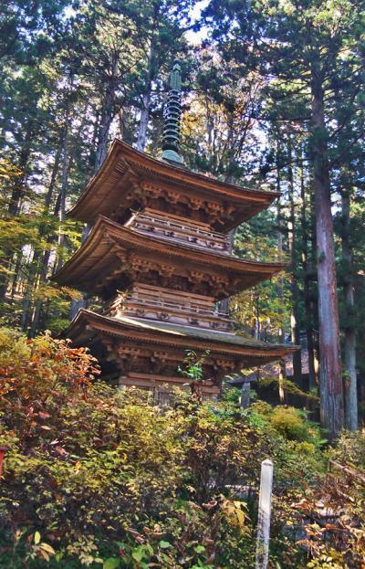 夏の光前寺の光苔と再び行った紅葉の三重塔