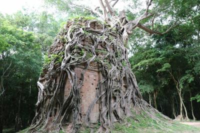 遺跡巡りカンボジア① 世界遺産「サンボー・プレイ・クック」(観光1日目)