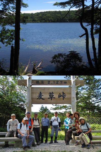 ハイキング倶楽部第48回 麦草峠・白駒池 Hiking to Mugikusatoge/Shirokomaike