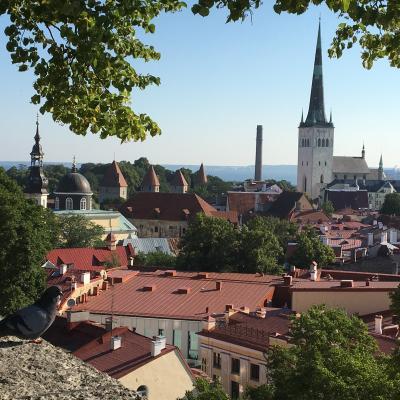 バルト三国 ヘルシンキの旅 ⑩ エストニア タリン観光~可愛い街を散歩。