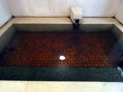 妻の親兄弟と飲む甲府1泊 ホテル談露館 甲府温泉 黒い湯の華の湯