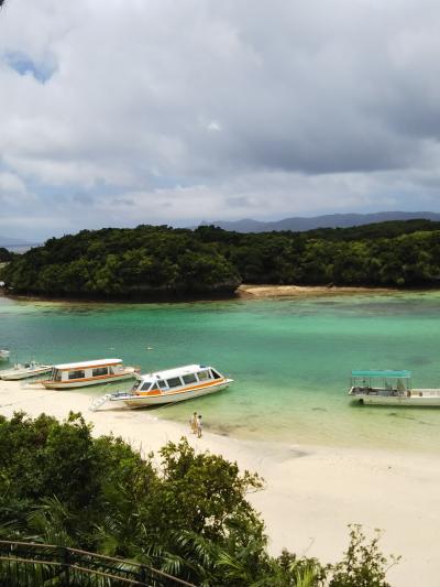 石垣島の旅、イルカと猫と水牛と…② 川平湾とドルフィンファンタジー編