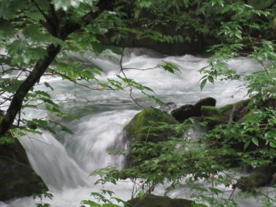 涼を求めて 奥入瀬から乳頭温泉そして平泉  その1 奥入瀬渓谷
