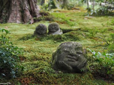 猛暑の中、京都散策:大原~下鴨神社