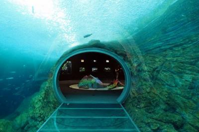 夏の北陸水族館めぐり2日目~上越市立水族博物館・宮崎 境海岸編~