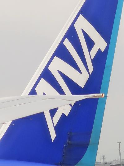 福岡空港へ 羽田7:25発⇒110分 ANA241で ☆冠雪の山脈を越えて