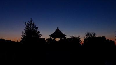 早朝散歩 久しぶりに新池公園に行ってみました 上巻。