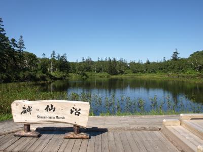 夏・神仙沼