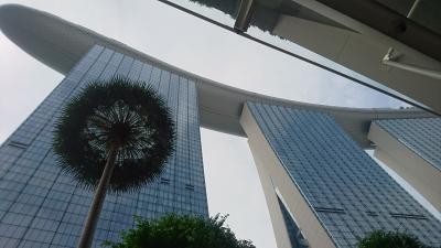 SFC修行で弾丸シンガポール