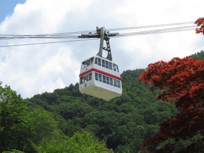 標高2,156m「新穂高ロープウェイ」で涼風の絶景